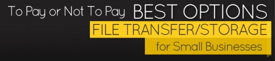 To Pay or Not To Pay. Best Options for Small Business File Transfer/Storage