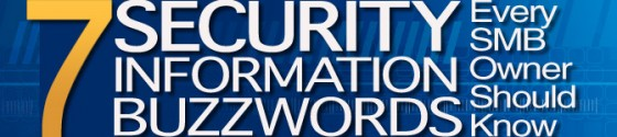 7 Security Information Buzzwords Every SMB Owner Should Know