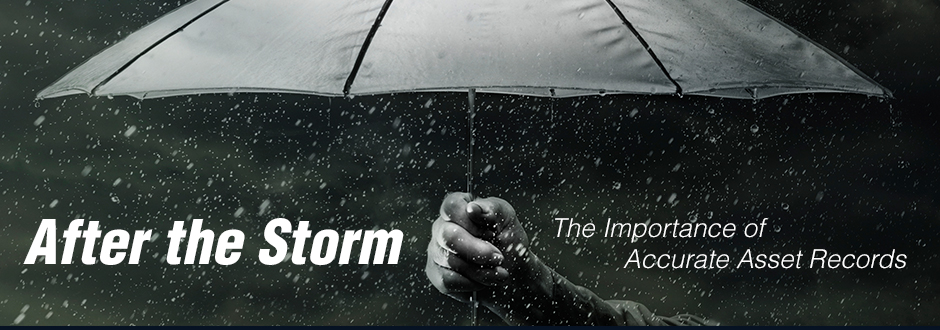 after-the-storm-banner